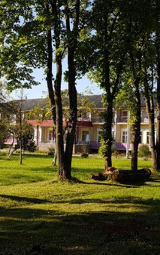 Пушкиногорский Дом Ветеранов (101)